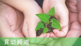 育幼頻道【2017年10-12月】【新課程】